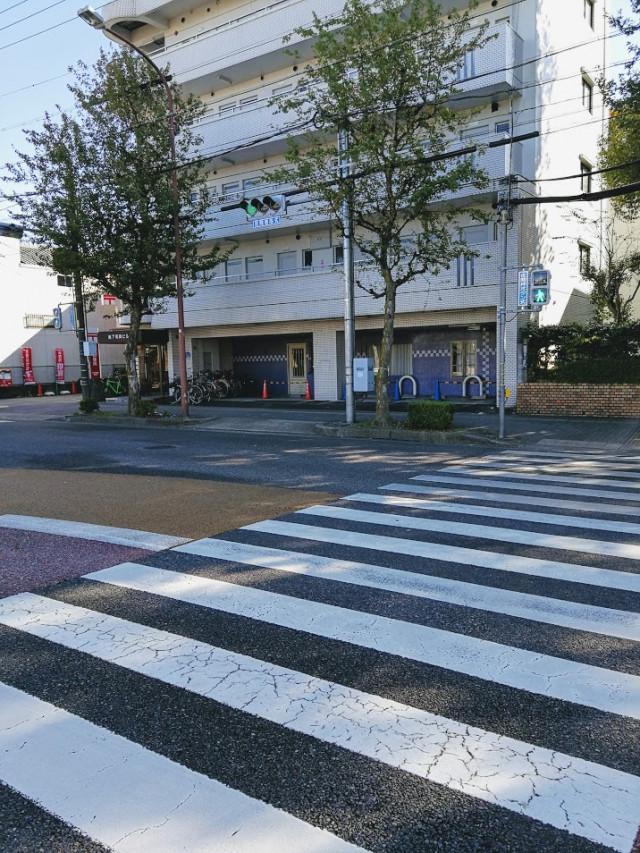 バス停「萱場」の横断歩道